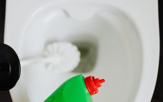 wc stinkt